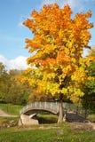 Bridge over the river Lososinka Royalty Free Stock Photo