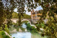 Bridge over the river Tevere. View through trees to the Bridge over the river tevere Royalty Free Stock Photo