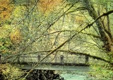Bridge running through a mossy colorful autumn forest royalty free stock photo