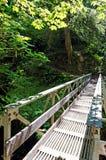 Bridge over a stream royalty free stock photos