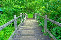Bridge over stream Royalty Free Stock Image