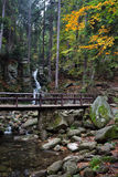 Bridge Over Stream in Mountain Forest Royalty Free Stock Images