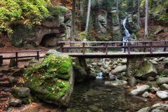 Bridge Over Stream in Mountain Forest Stock Image