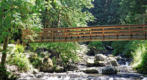 Bridge over a stream near portland oregon Royalty Free Stock Photography