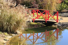 Bridge over a Stream with Pampas Grass Stock Photography