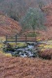 Bridge over stream on the Pennine Way, Northumberland stock images