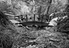 Bridge over Stream, Stormont, Co. Antrim, Ireland. Rustic footbridge over stream in woodland Royalty Free Stock Images