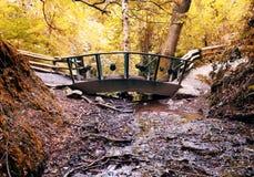 Bridge over stream. Bridge over tiny stream in woodland Stock Photos