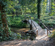 Bridge over a stream in tropical forest in Royalty Free Stock Image