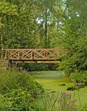 Bridge over swamp. Foot bridge over a swamp Stock Images