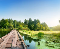 Bridge over a swampy river. On sunrise Stock Photo