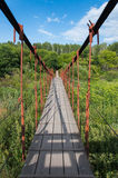 Bridge over the thicket Stock Photography