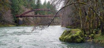 Bridge over Umpqua River Oregon State stock photos