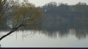 Vltava River Bridge stock footage
