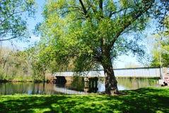 Bridge over water. Willow over water oak island Stock Image