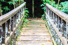 Bridge over the waterfall Royalty Free Stock Photos
