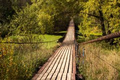 Bridge. Over a wild river in the forest stock image