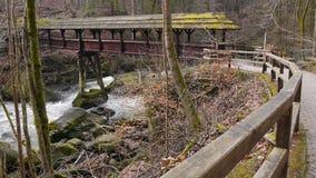 Bridge over wild water in natural park Eifel, Germany stock video