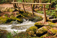 Bridge over a wilderness creek Royalty Free Stock Photos