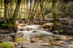 Bridge over a wooded stream in figueiro dos vinhos, leiria, portugal.  royalty free stock image