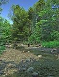Bridge over a Woodland Stream Stock Photo