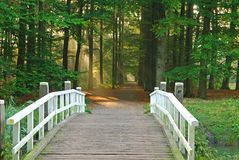 Bridge in park. Where the sunlight shines through the leaves Royalty Free Stock Photo