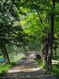 Bridge in the park of Gatchina, Russia Stock Images
