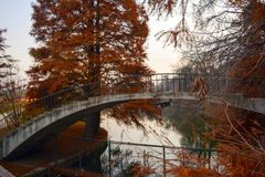 Autumn bridge Stock Image