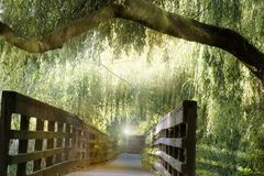 A bridge in a park on a hot summer day royalty free stock photography