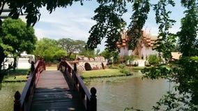 Bridge in the park stock video