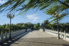 Bridge in a park under the windy day Royalty Free Stock Photo