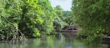 Bridge at the park stock images