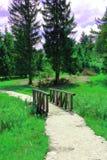 Bridge in park. Wooden bridge in park next to lake Volcje Stock Images