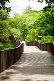 Bridge path in the garden. Vachirabenjatas Park thailand Royalty Free Stock Photos