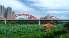 The bridge and Pavilion in SHENZHEN,CHINA,ASIA Royalty Free Stock Photos