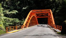 Bridge in rain forest of Peru stock photography