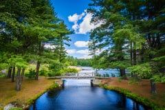Bridge and pine trees at Bear Brook State Park, New Hampshire. Stock Photo