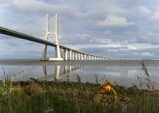 bridge planlagd gama lisbon santiago vasco f?r calatravaen da arkivfoton
