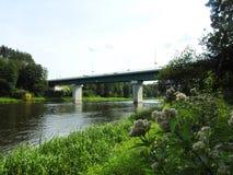 Bridge, plants and river Nemunas, Lithuania stock image