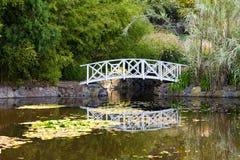 Bridge on pond. White bridge over a pond at the Hobart Botanical Gardens Royalty Free Stock Photo