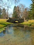 Bridge and pond. Foot bridge and fish pond scene Stock Images