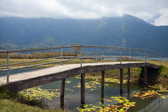 The bridge on the pond in Bali. Royalty Free Stock Photo