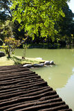 Bridge with and pond in the park Stock Photography