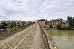 Bridge of the Queen (Puente la Reina) Royalty Free Stock Image