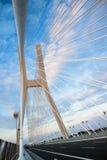 bridge redzin Arkivfoton