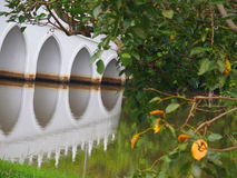 Bridge Reflection. A symmetrical reflection of a bridge. At the Chinese Garden, Singapore Stock Photography