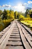 Bridge through river Royalty Free Stock Image