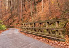 Bridge, Saxon Switzerland Stock Images