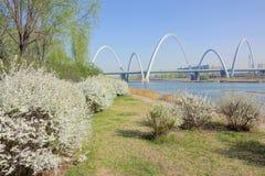 Bridge scenery Royalty Free Stock Photography