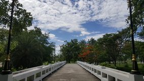 bridge skyen fotografering för bildbyråer